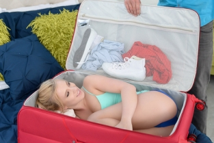 The Stowaway Bailey Brooke, Sean Lawless