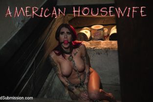 Sex And Submission - Tana Lea American Housewife